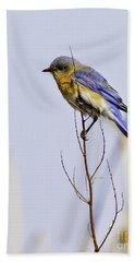 Bluebird Beach Towel