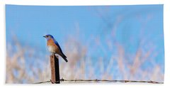 Bluebird On A Post Beach Towel by Mike  Dawson