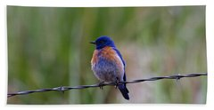 Bluebird On A Wire Beach Towel by Mike  Dawson