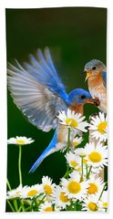 Bluebirds And Daisies Beach Sheet