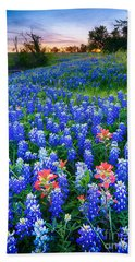 Bluebonnets Forever Beach Towel