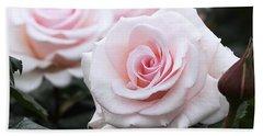 Blush Pink Roses Beach Towel