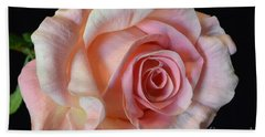 Beach Towel featuring the photograph Blushing Pink Rose by Jeannie Rhode