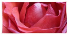 Blushing Pink Rose Beach Towel