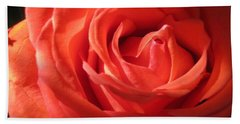 Blushing Orange Rose 1 Beach Towel