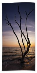 Beach Sheet featuring the photograph Bonita Beach Tree by Bradley R Youngberg