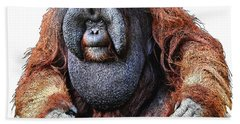 Bornean Orangutan Beach Towel