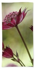 Botanica Beach Towel