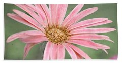 Botanical Explosion 4 Beach Towel