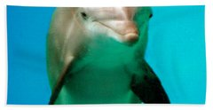 Bottlenose Dolphin Portrait Beach Sheet