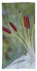 Bouquet On Bokeh Beach Towel