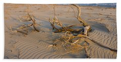 Branches Beach Sheet