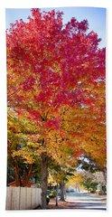 brilliant autumn colors on a Marblehead street Beach Towel by Jeff Folger
