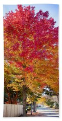 brilliant autumn colors on a Marblehead street Beach Towel