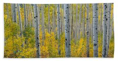 Brilliant Colors Of The Autumn Aspen Forest Beach Sheet