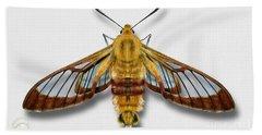 Broad-bordered Bee Hawk Moth Butterfly - Hemaris Fuciformis Naturalistic Painting -nettersheim Eifel Beach Towel