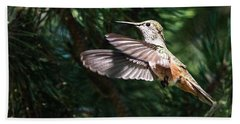 Broad-tailed Hummingbird Beach Sheet