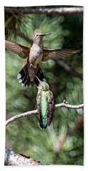 Broad-tailed Hummingbird Pair Beach Towel