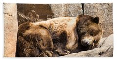 Brown Bear Asleep Again Beach Sheet by Chris Flees
