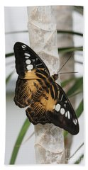 Brown Clipper Butterfly #2 Beach Towel by Judy Whitton