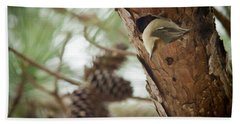 Brown Headed Nuthatch Beach Towel by Linda Unger