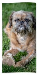 Brussels Griffon Beach Towel