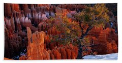 Bryce Canyon Winter Light Beach Towel by Leland D Howard