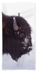 Buffalo In Snow   #6983 Beach Towel by J L Woody Wooden