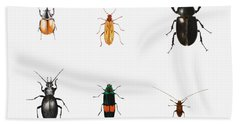 Bugs Beach Towel by Ele Grafton