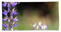 Bumble Bee On Lupine Beach Sheet by Rich Collins