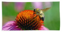 Bumblebee On A Coneflower Beach Towel