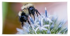 Beach Towel featuring the photograph Bumblebee On Thistle Blossom by Marty Saccone