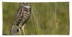 Burrowing Owl Stare Beach Towel