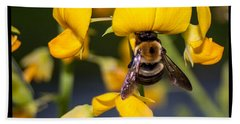 Busy Bee 3 Beach Towel