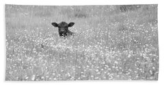 Buttercup In Black-and-white Beach Sheet by JD Grimes