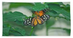 Beach Towel featuring the photograph Butterflies Gentle Touch by Thomas Woolworth