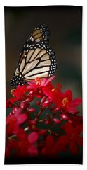 Beach Sheet featuring the photograph Butterfly 6 by Leticia Latocki
