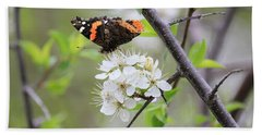 Beach Towel featuring the photograph Butterfly And Apple Blossoms by Penny Meyers