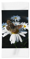 Butterfly And Shasta Daisy - My Spring Garden Beach Sheet by Brooks Garten Hauschild