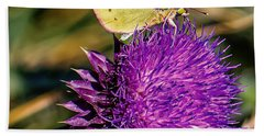 Butterfly And Thistle 1 Beach Towel