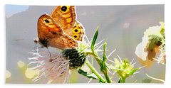 Butterfly Collect Juice  Beach Towel