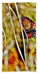 Butterfly Duo Beach Towel by VLee Watson