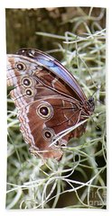 Butterfly In Moss Beach Towel