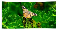 Butterfly In Paradise Beach Towel