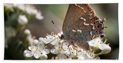 Butterfly In The Garden Beach Towel