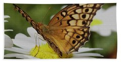 Beach Towel featuring the photograph Butterfly On Daisy by James C Thomas