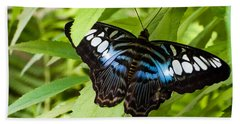 Butterfly On Leaf   Beach Towel