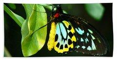 Butterfly On Leaf Beach Towel by Laurel Powell