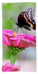 Butterfly On Pink Flower Beach Sheet