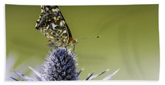 Butterfly On Thistle Beach Sheet